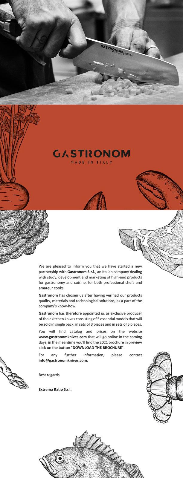 newsletter_gastronom_ENG.jpg